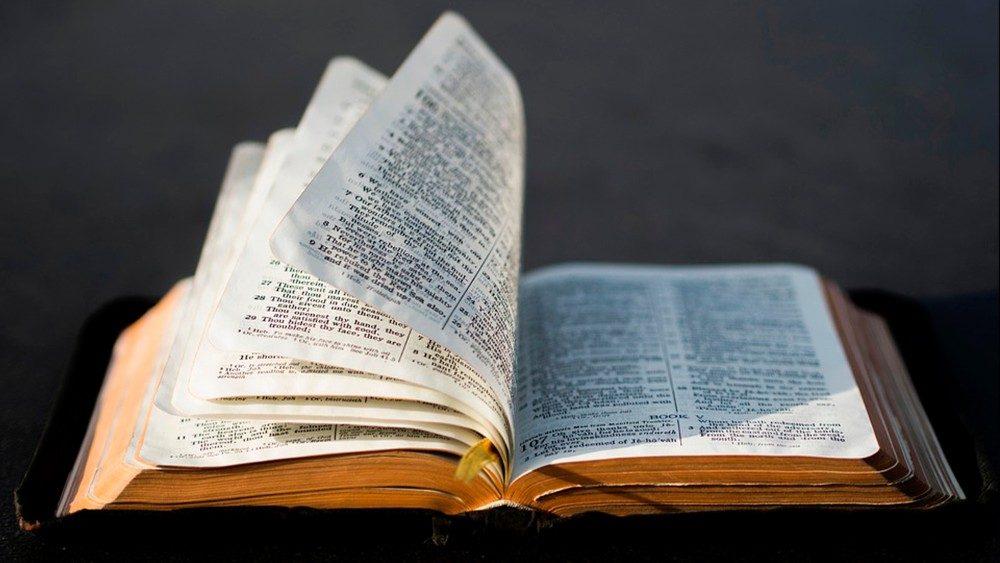 """Orientações para a celebração do """"Domingo da Palavra de Deus"""""""